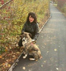 Охранник -кинолог с собакой