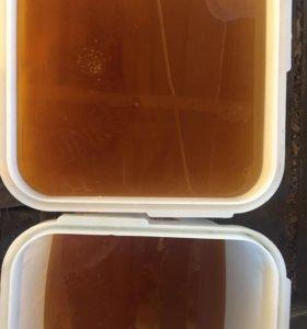 Мёд Тамбов