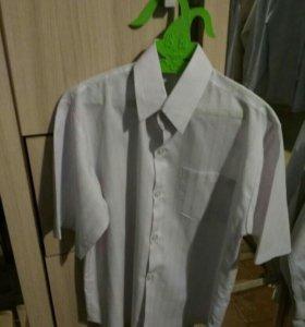 Рубашки в школу!!!