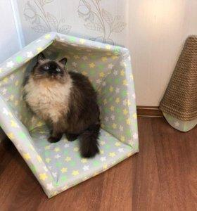 Домик для кошки + когтеточка 2 в 1 (для собак)