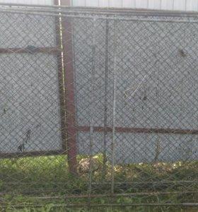 Продам сетчатый забор