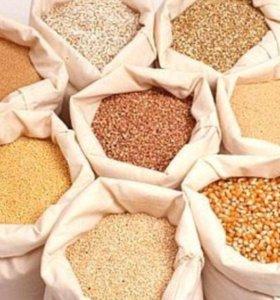 Комбикорм ,пшеница ,ячмень