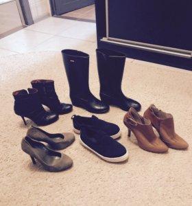 Сапоги, туфли, ботильоны
