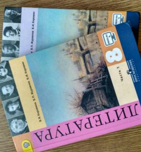 Учебники, литература 9 класс 1 и 2 ч