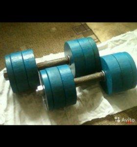 Гантели Разборные (дисковые) - вес 50 кг.