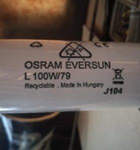 Лампы Osram Eversun L100W/79