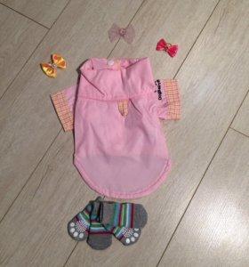 S Одежда для собак (рубашка)
