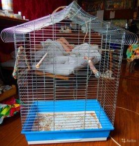 клетка для птиц болшая