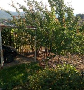 Участок, 9 м², сельхоз (снт или днп)
