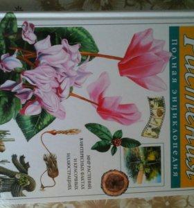 Большая энциклопедия растений