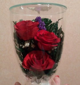Натуральные цветы в герметичной вазе Опт, розница