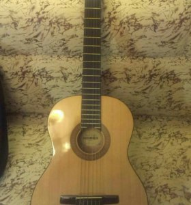 Гитара HOHNOR HC06 + зимний чехол