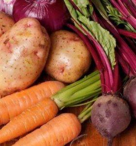 Картофель, свёкла