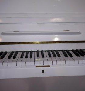 Пианино Рёниш немец