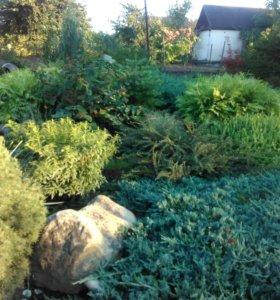 Уход за садом.