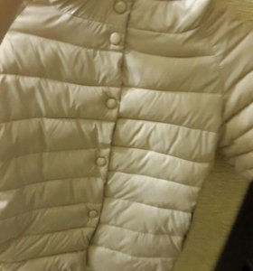 Куртка новая (М)