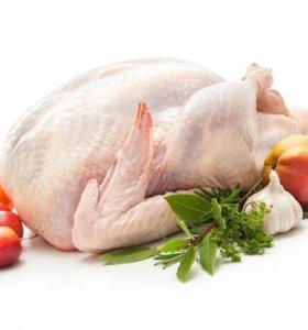 Тушки бройлера, гуся, мускусной(индо) утки, яйцо