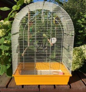 Клетка большая+корм для волнистых попугайчиков.