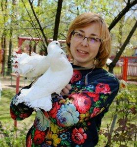 Белоснежные голуби павлины для фотосессии.