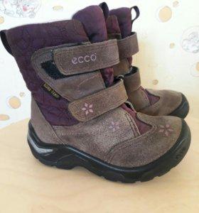 Ботинки демисезонные Ecco 24