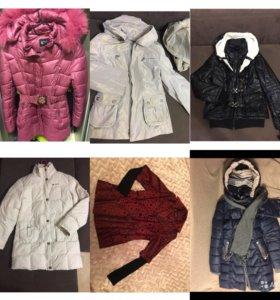 Куртки, пуховики, парка