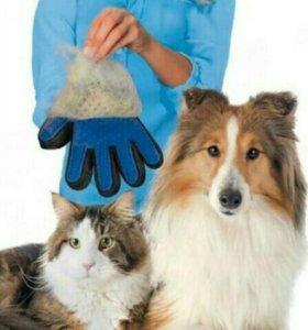 Для кошки и собак причёска.