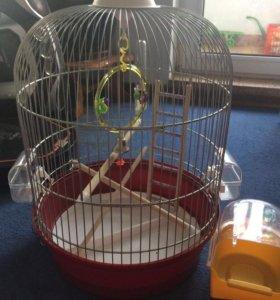 Клетка и ванна для птиц