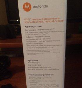 Видеоняня Motorola FOCUS 66-B WiFi (черный)