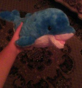 Плюшевый дельфин!