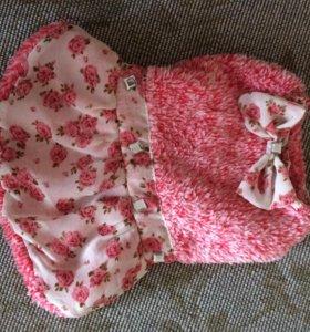 Платье для собаки
