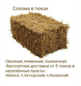 Солома в тюках (овсяная, ячменная, пшеничная)