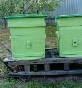 Ульи для пчел с рамками