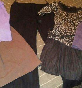 Одежда на 50 размер