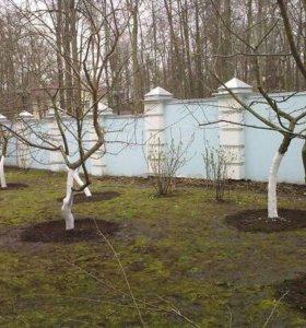 Весенние работы в саду.Кронирование деревьев