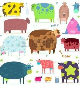 Продам корову, можно на мясо
