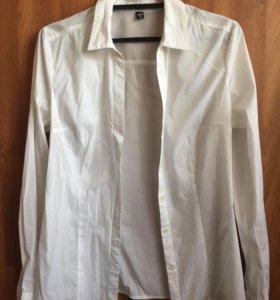 Белая блузка ZOLLA