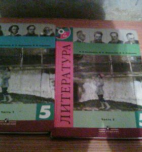 Книги 5 класса по литературе  биболетова