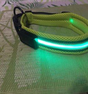 Светящийся ошейник с USB
