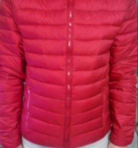 Новая мужская куртка Terranova