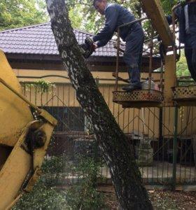 Опиловка и удаления деревьев