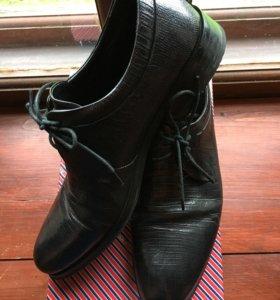 Мужские ботинки Терволина