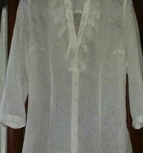 Блуза блузка zolla