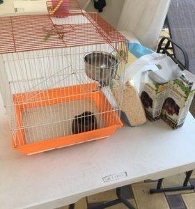 Клетка для крысы, корм, опилки