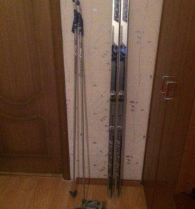 Беговые лыжи комплект