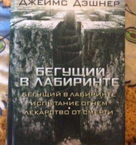 Книга ( Бегущий в лабиринте )