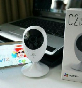IP камера / видеоняя