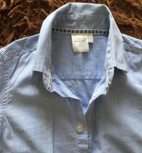 Рубашка Jasper Conran Junior