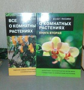 все о комнатных растениях150