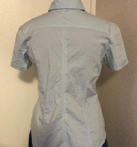 Рубашка женская, Zona Brera