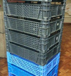 Ящики для овощей и фруктов 400х300х70 мм